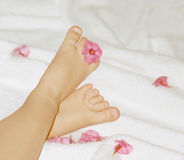 Baby`s feet with flowers. Baby`s feet and flowers Royalty Free Stock Image