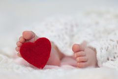 Baby's feet with love heart tag Royalty Free Stock Image