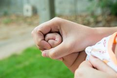 Baby`s fingers, hand. A handful of baby`s fingers, concept of love and family,sensitive focus Royalty Free Stock Photo