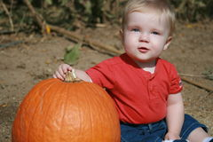 Baby's first. First visit to the pumpkin patch Royalty Free Stock Image