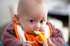 Baby's first meals. Royalty Free Stock Images