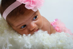 Baby's first photoshoot. Royalty Free Stock Photo