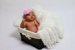 Baby's first photoshoot. Royalty Free Stock Image
