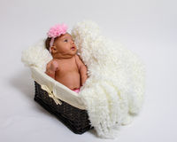 Baby's first photoshoot. Stock Image