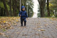 Baby`s first steps. The first independent steps. Toddler on the walk in the autumn park.  Stock Images
