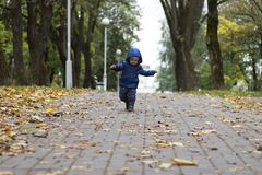 Baby`s first steps. The first independent steps. Toddler running in the autumn park Stock Images