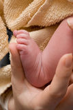 A Baby's Foot Stock Image