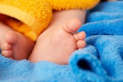 Baby's foot Stock Image