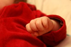 Baby's Hand Stock Photography