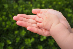 Baby's hand. Baby's little hand in mom's hand Royalty Free Stock Photos