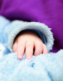 Baby's hand on the fur clothes. Baby's hand on the textile fur clothes Royalty Free Stock Photo