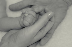 Baby's hand in the hands of parents Stock Photography