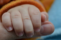 Baby's hand holding a finger of his father Royalty Free Stock Photo
