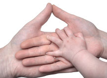 Baby's hand holding the hands of parents Royalty Free Stock Photography
