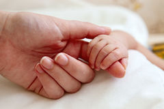 Baby's hand holding mother's finger Stock Photography