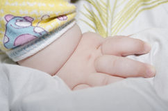 Baby's hand. Little baby's hand on а blanket royalty free stock photography