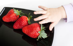 Baby's hand reaches for strawberries Stock Images