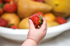 Baby's hand with strawberry stock photography