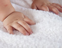 Baby's hands Stock Photography