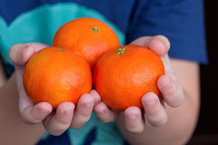 Baby's hands holding tangerine. Healthy eating concept Royalty Free Stock Photos