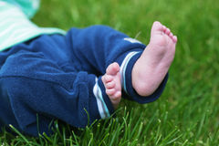 Baby's little feet Stock Images