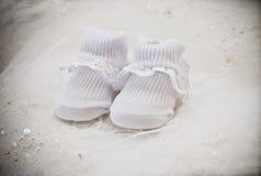 Baby's socks Stock Image