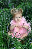 Baby's Touch. Baby girl sits in best of deep grass and flowers.  Her hair is in pigtails and she is wearing only a pink feather boa Royalty Free Stock Photo
