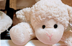 Baby's Toy Stuffed Lamb. A close up of a stuffed animal lamb for a baby stock image