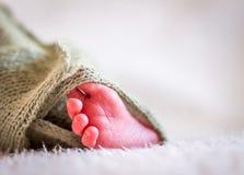 Baby` s voet Stock Foto's