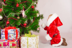 Baby in Santa costume at the Christmas tree Stock Photography