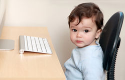 Baby sat in office Stock Photography