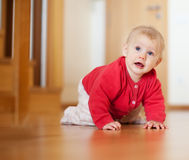 Baby  of seven months old Royalty Free Stock Image