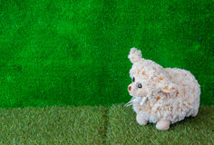 Baby sheep doll on the green grass Royalty Free Stock Image