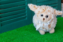 Baby sheep doll on green grass Royalty Free Stock Photography