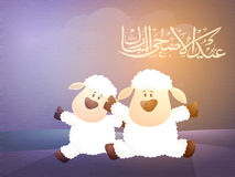 Baby Sheep's with Arabic Calligraphy for Eid-Al-Adha. Royalty Free Stock Image