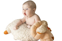 Baby with sheep Stock Images