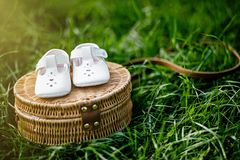 Waiting of baby. Pregnant woman. Happy family. baby`s bootees wi. Baby shoes on the grass. Stylish baby shoes with free copy space Stock Photography