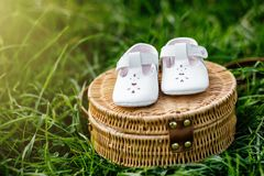 Baby shoes on the grass. Stylish baby shoes. Selective focus. Stock Image