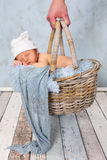 Baby shopping Stock Image