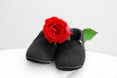 Baby shose with rose Stock Photos