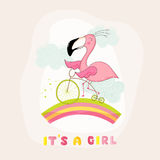 Baby Shower or Arrival Card - Baby Flamingo Girl on a Bike Royalty Free Stock Image