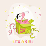 Baby Shower or Arrival Card - Baby Flamingo Girl in a Box Royalty Free Stock Photos