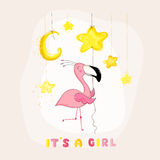 Baby Shower or Arrival Card - Baby Flamingo Girl with a Star Stock Photography