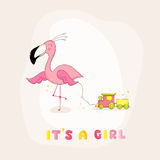 Baby Shower or Arrival Card - Baby Flamingo Girl Royalty Free Stock Image