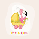 Baby Shower or Arrival Card - Baby Flamingo Girl Stock Photo