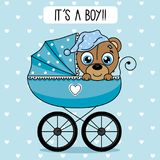Bear inside baby cart Stock Image