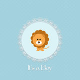 Baby shower card for baby boy, with lion and lace frame Royalty Free Stock Image