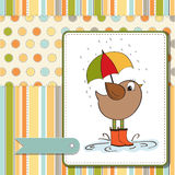 Baby shower card with little bird Royalty Free Stock Photos