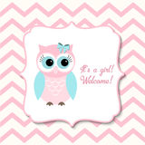 Baby shower for girls with pink owl, illustration Royalty Free Stock Image