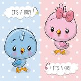 Baby Shower greeting card with Birds boy and girl. Baby Shower greeting card with Cute Birds boy and girl stock illustration